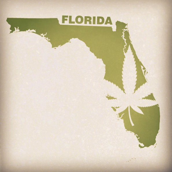 MMTC License in Florida